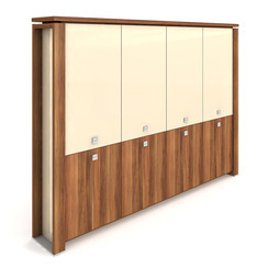 Cabinet, hinged doors + glass doors - E 5 4 01 S