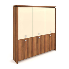 Cabinet, hinged doors + glass doors - A 5 3 01