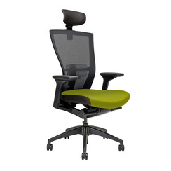 Office chair with headrest, BI 203, green - MERENS SP